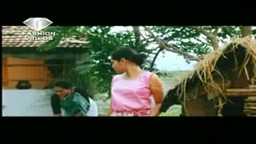 Red Queen Telugu softcore movie